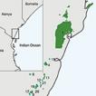 A new Vegetation-Plot Database for the ...