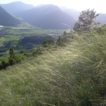 Long term changes of the inner-alpine s ...
