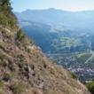 Xeric grasslands of the inner-alpine ...